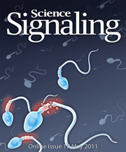 a cover of Science Signaling